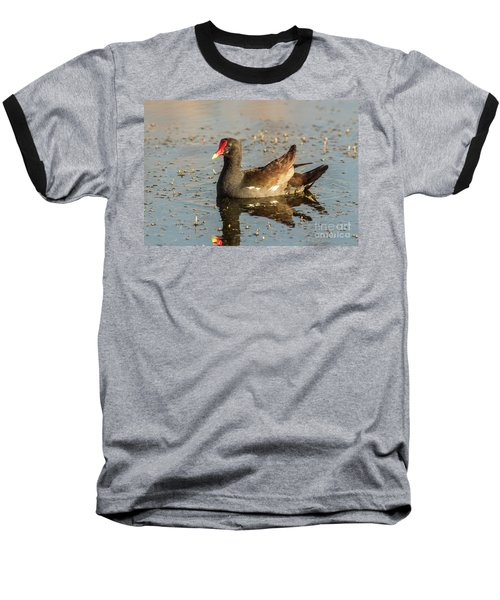 Baseball T-Shirt featuring the photograph Common Gallinule by Robert Frederick