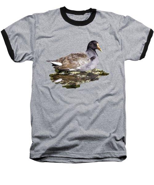 Common Gallinule Transparency Baseball T-Shirt