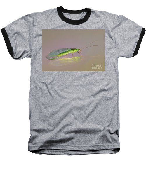 Common Green Lacewing - Chrysoperla Carnea Baseball T-Shirt by Jivko Nakev
