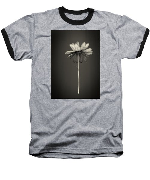 Cone Flower 7 Baseball T-Shirt