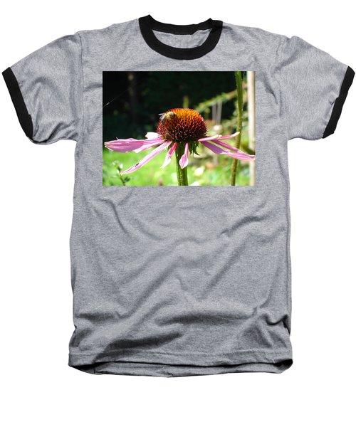 Cone Flower And Honey Bee Baseball T-Shirt