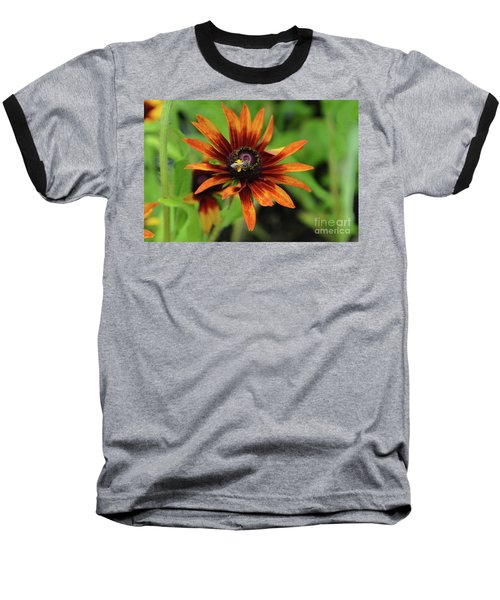 Cone Flower Baseball T-Shirt
