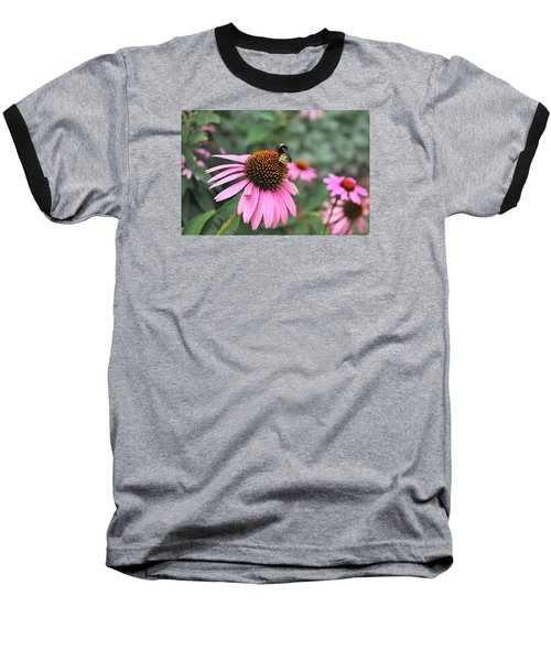 Baseball T-Shirt featuring the photograph Cone Flowers And Bee by Sheila Brown
