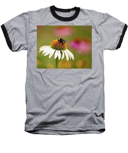 Coneflower And Bee Baseball T-Shirt