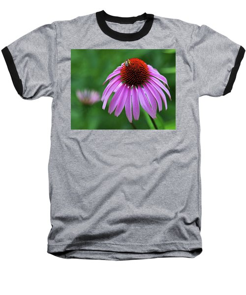 Baseball T-Shirt featuring the photograph Coneflower by Judy Vincent