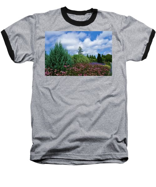 Coneflowers And Clouds Baseball T-Shirt by Lois Lepisto