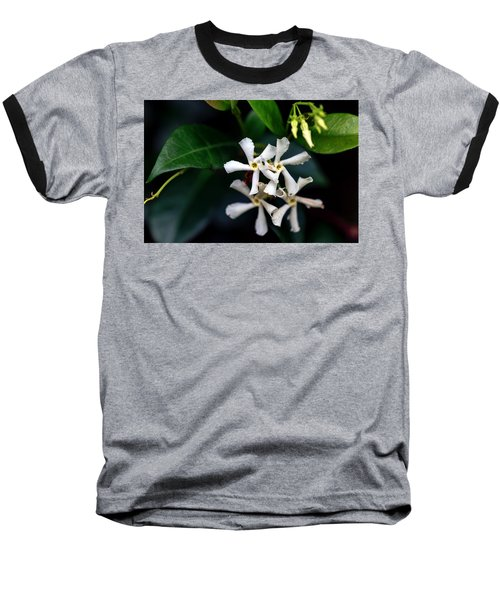 Confederate Jasmine Baseball T-Shirt by Sennie Pierson