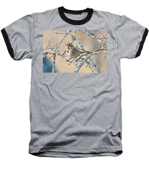 Confident Sparrow Baseball T-Shirt