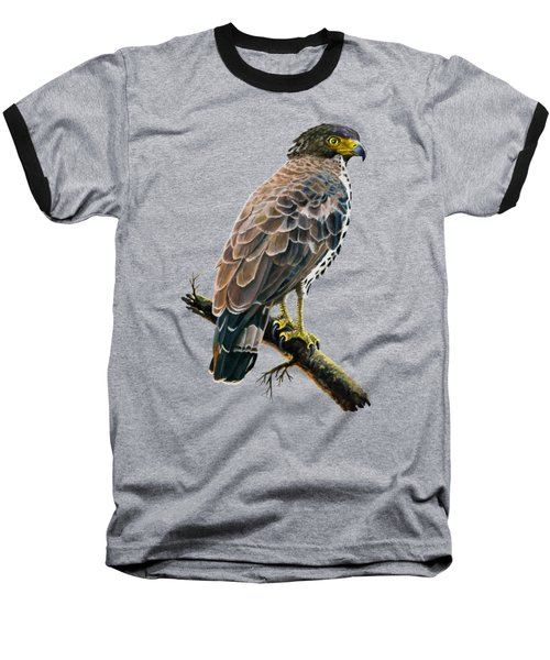 Congo Serpent Eagle Baseball T-Shirt by Anthony Mwangi