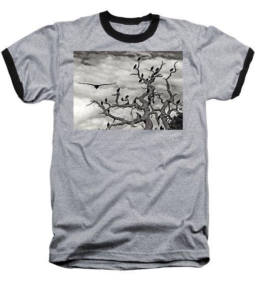 Congress Of Vultures Baseball T-Shirt