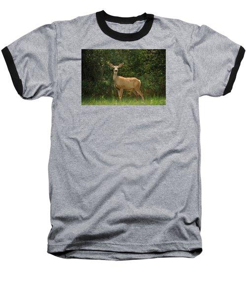 Connection Baseball T-Shirt