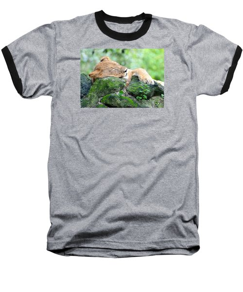 Contented Sleeping Lion Baseball T-Shirt