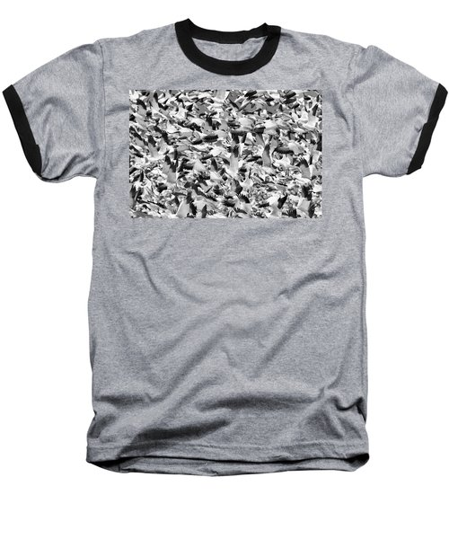 Baseball T-Shirt featuring the photograph Controlled Chaos Bw by Everet Regal