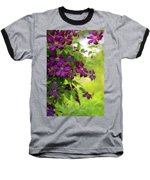 Copious Clematis Baseball T-Shirt