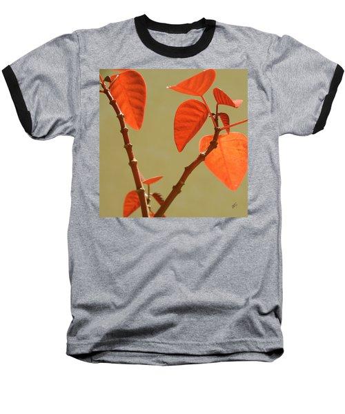 Copper Plant Baseball T-Shirt
