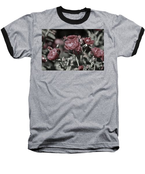 Copper Rouge Rose In Almost Black And White Baseball T-Shirt