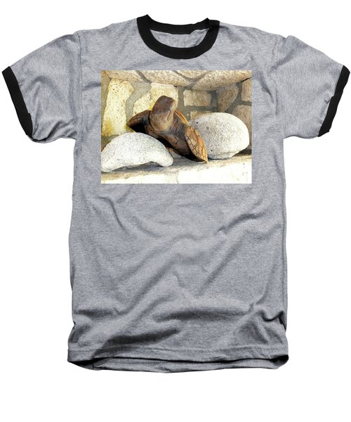 Baseball T-Shirt featuring the photograph Coral And Turtle Decor by Francesca Mackenney