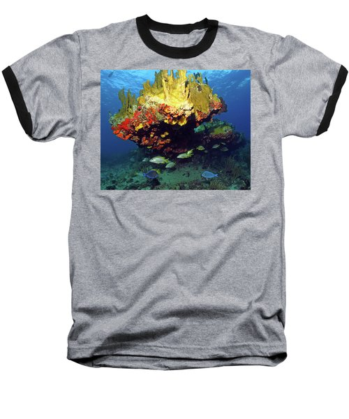 Coral Reef Scene, Calf Rock, Virgin Islands Baseball T-Shirt