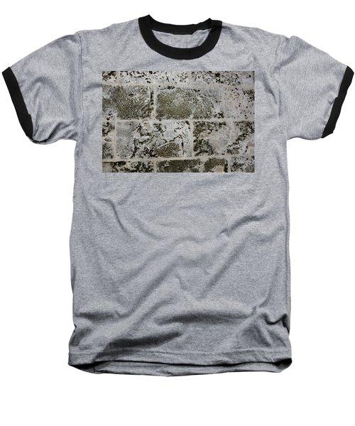 Coral Wall 205 Baseball T-Shirt by Michael Fryd