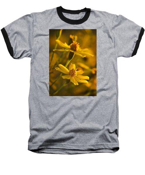 Coreopsis Verticillata 3 Baseball T-Shirt