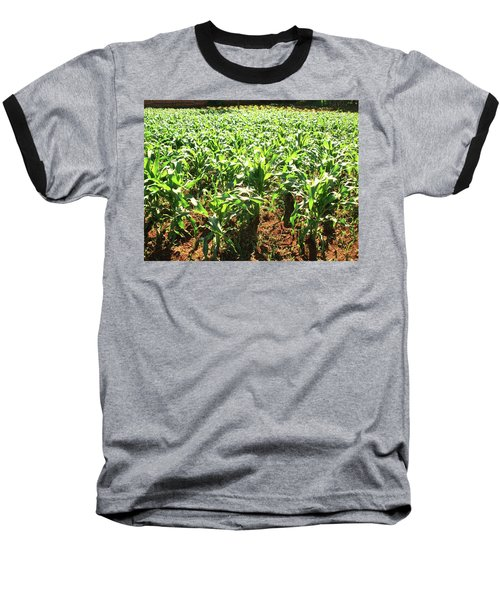 Baseball T-Shirt featuring the photograph Corn Island by Beto Machado