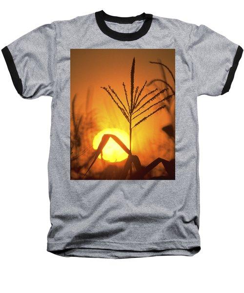 Cornfield Sunset Baseball T-Shirt by Garry McMichael