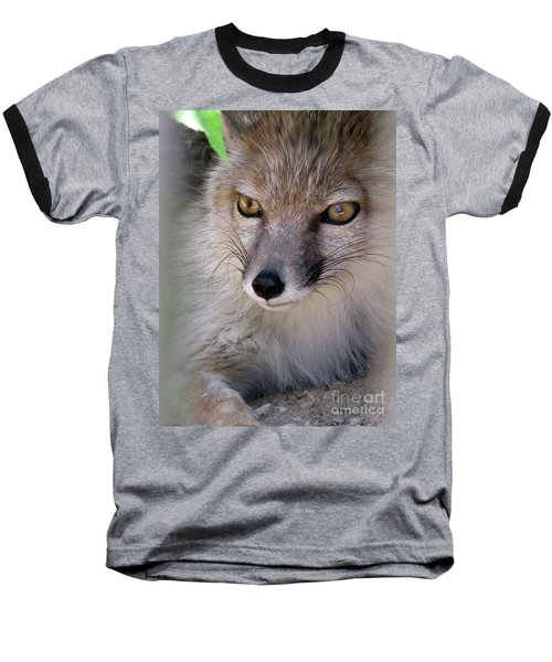 Baseball T-Shirt featuring the photograph Corsac Fox- Vulpes Corsac 03 by Ausra Huntington nee Paulauskaite
