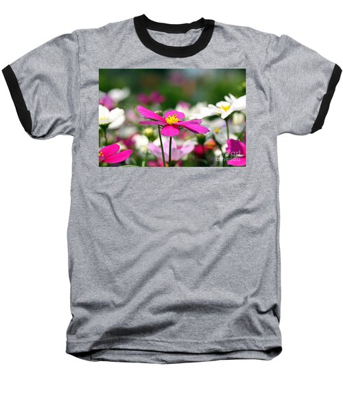 Cosmos Flowers Baseball T-Shirt by Denise Pohl