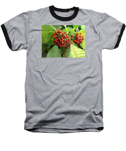 Costa Rican Berries Baseball T-Shirt