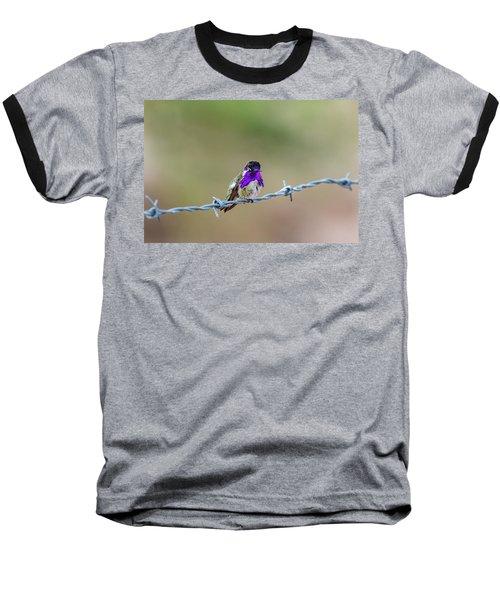Costa's Hummingbird Baseball T-Shirt