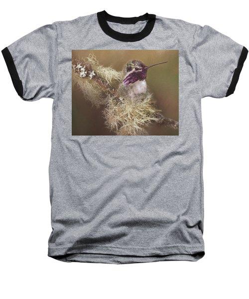 Costas Hummingbird Painted Baseball T-Shirt