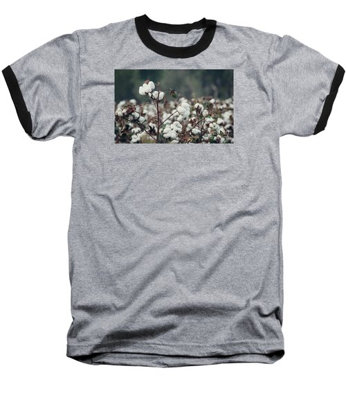 Cotton Field 5 Baseball T-Shirt by Andrea Anderegg