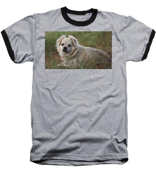Cotton In The Grass Baseball T-Shirt