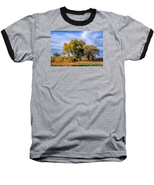 Cottonwood #1 Tree On Ranch Land In Colorado Fall Colors Baseball T-Shirt