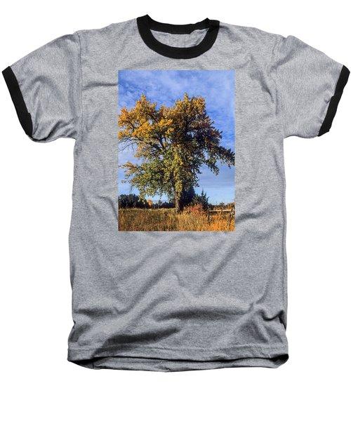 Cottonwood #3 Colorado Ranch Country In Fall Baseball T-Shirt by John Brink