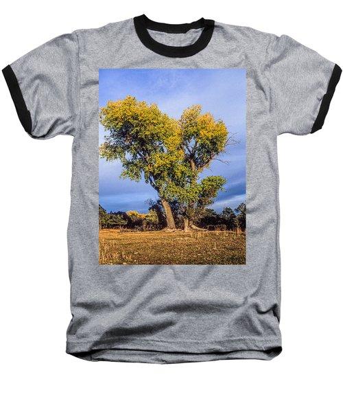 Cottonwood #4 Fall Ranch Colorado Baseball T-Shirt by John Brink