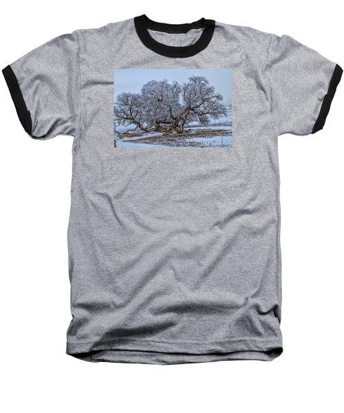 Cottonwood Sprawl Baseball T-Shirt by Alana Thrower