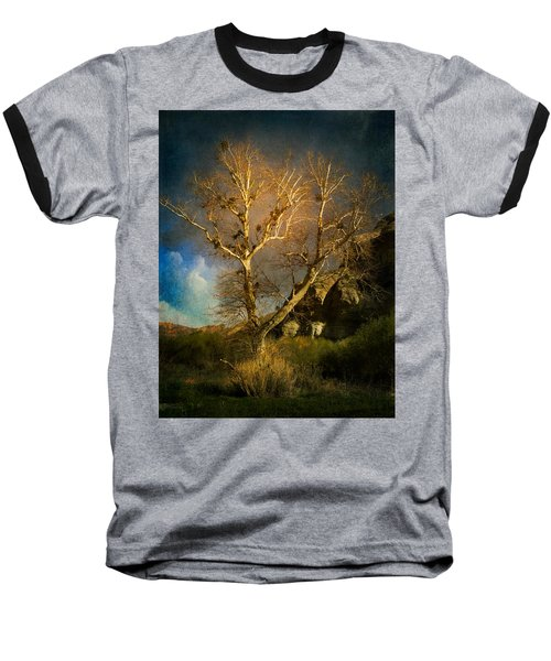 Cottonwood Tree Baseball T-Shirt