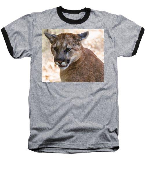 Cougar Portrait Baseball T-Shirt