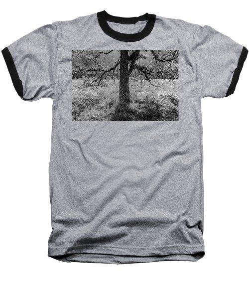 Coulee Oak Baseball T-Shirt