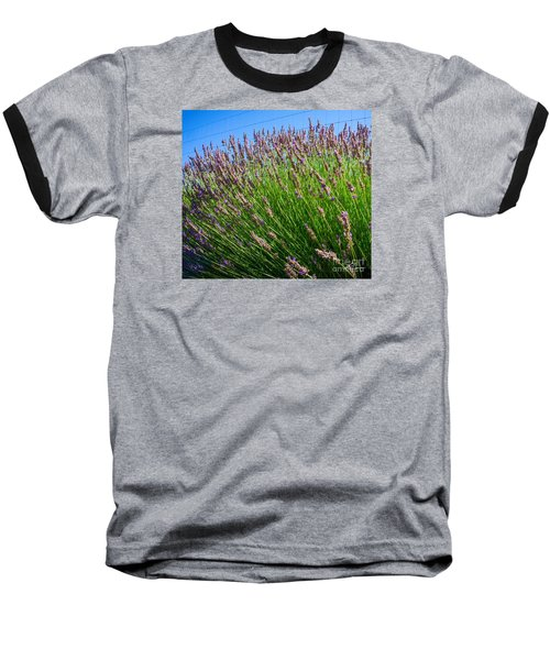 Country Lavender I  Baseball T-Shirt