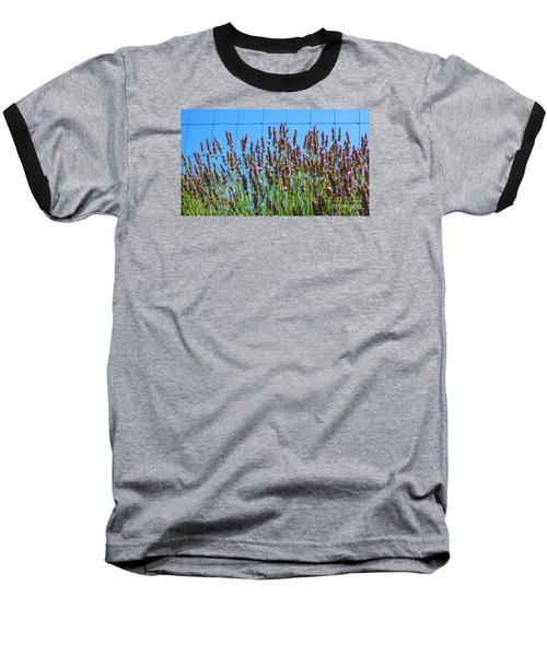 Country Lavender IIi Baseball T-Shirt