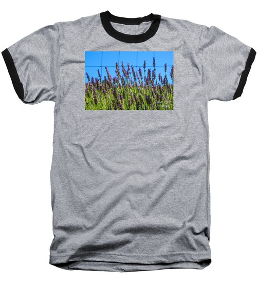 Country Lavender Vii Baseball T-Shirt