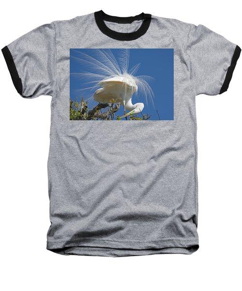 Courting Display Baseball T-Shirt