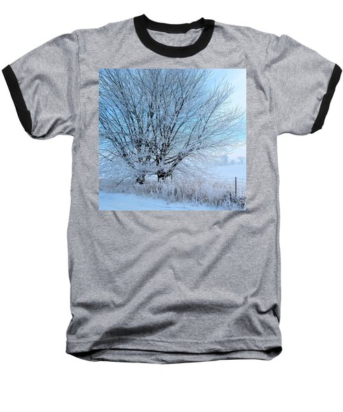 Covered In Ice Baseball T-Shirt by Heather King
