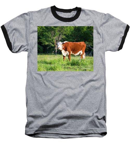 Cow #1 Baseball T-Shirt