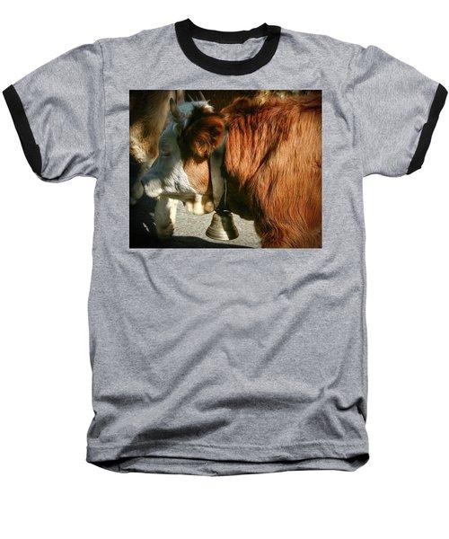 Cow Beautiful - Baseball T-Shirt