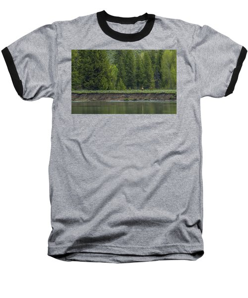 Cow Elk On The Riverbank Baseball T-Shirt