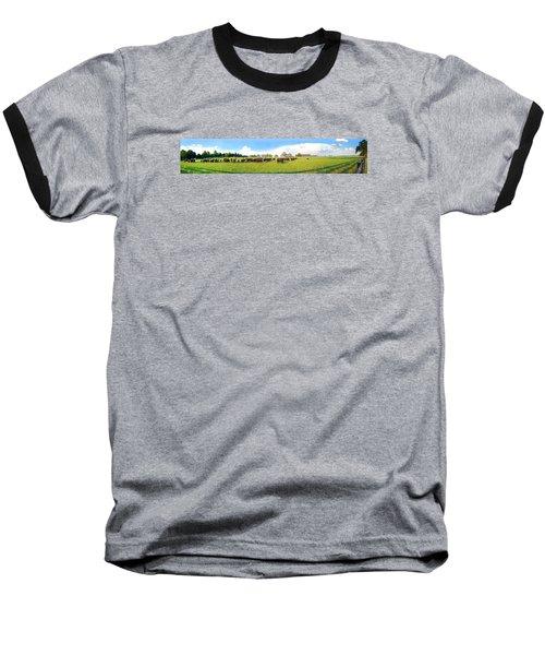 Cow Expance Baseball T-Shirt