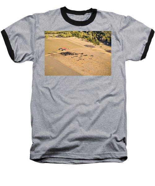 Cows And Trucks Baseball T-Shirt